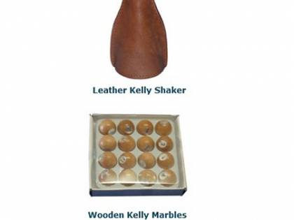 Kelly Pool Shaker Kit